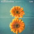 care single (2020)
