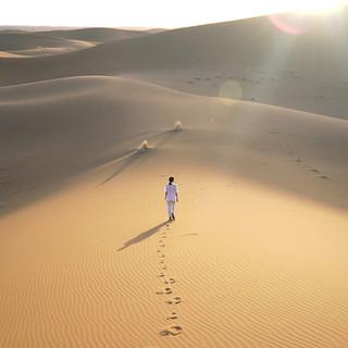 "single ""dune solitaire"" (2019)"