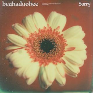 sorry single (2020)
