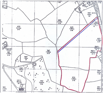 land at tolcarne lot 1 pic.png