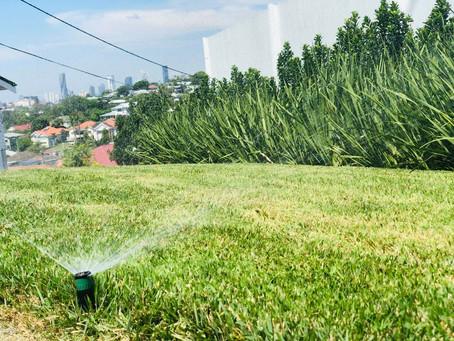 Top 3 tasks for Autumn gardening