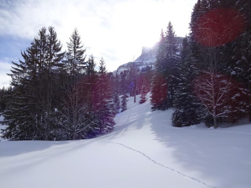 Skiweekend2018Axalp023.jpg