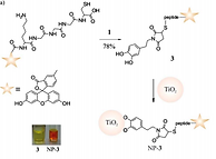 Bifunctional Catechol Based Linkers for Modification of TiO2 Surfaces
