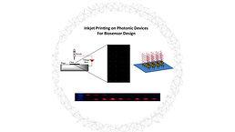 NanoMed_Figure2.jpg