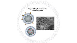 NanoMed_Figure1.jpg