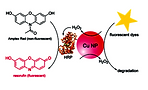 Reactive Oxygen Species Production by Catechol Stabilized Copper Nanoparticles