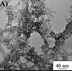 BiocompatibleHydrogel Nanocomposite with Covalently Embedded Silver Nanoparticles