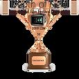 DoF IntFilmFest Excellence laurel.png