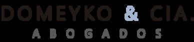 logo domeyko.png