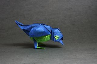 Bird-Miyajima-max.jpg
