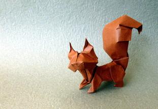 Squirrel by Oriol Esteve