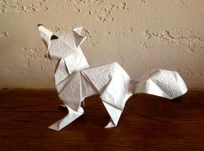 Artic Fox by Oriol Esteve