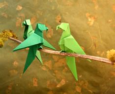 Découvrez-l'origami-#23-perroquet.jpg