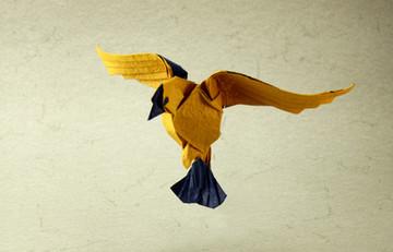 Yellow flying bird