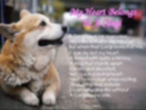 my heart belongs to a corgi.jpg