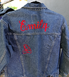 embroidered jacket.png
