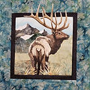 November Elk.jpg