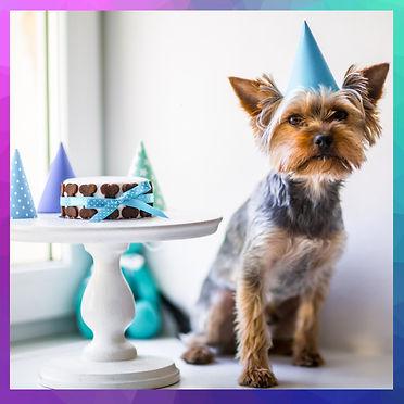 Doggie Birthday Cake Pic 1
