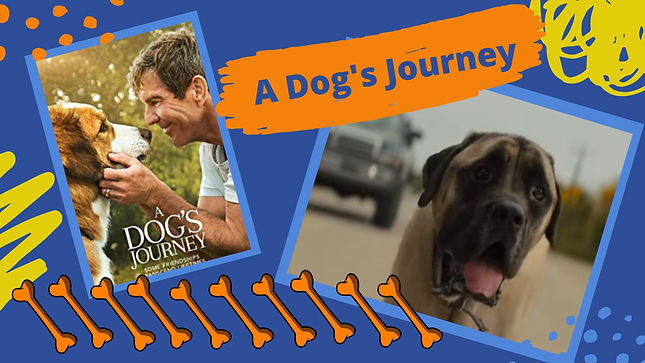 A Dogs Journey Header