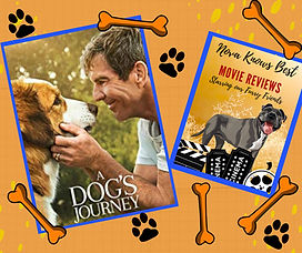 A Dogs Jouney - Movie Review