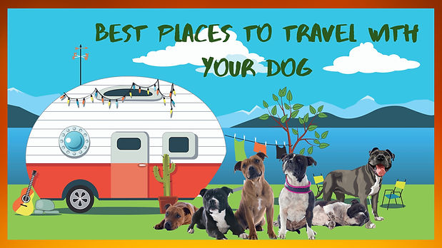 Best Places To Travel With Your Dog