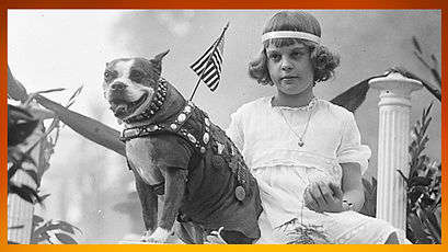 Sergeant Stubby Picture 2