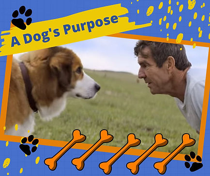 A Dogs Purpose Header