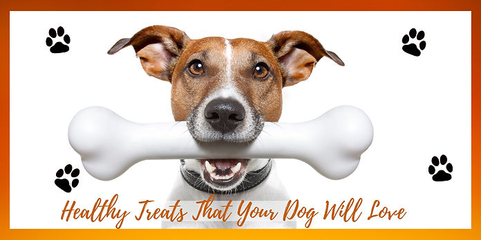 Healthy Treats that your dog will love