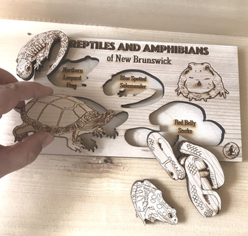Reptiles and Amphibians of NB Puzzle