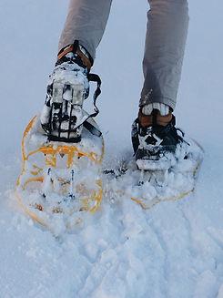 snowshoeGardenGrove.jpg