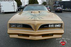 1978 Pontiac Trans Am Firebird.JPG