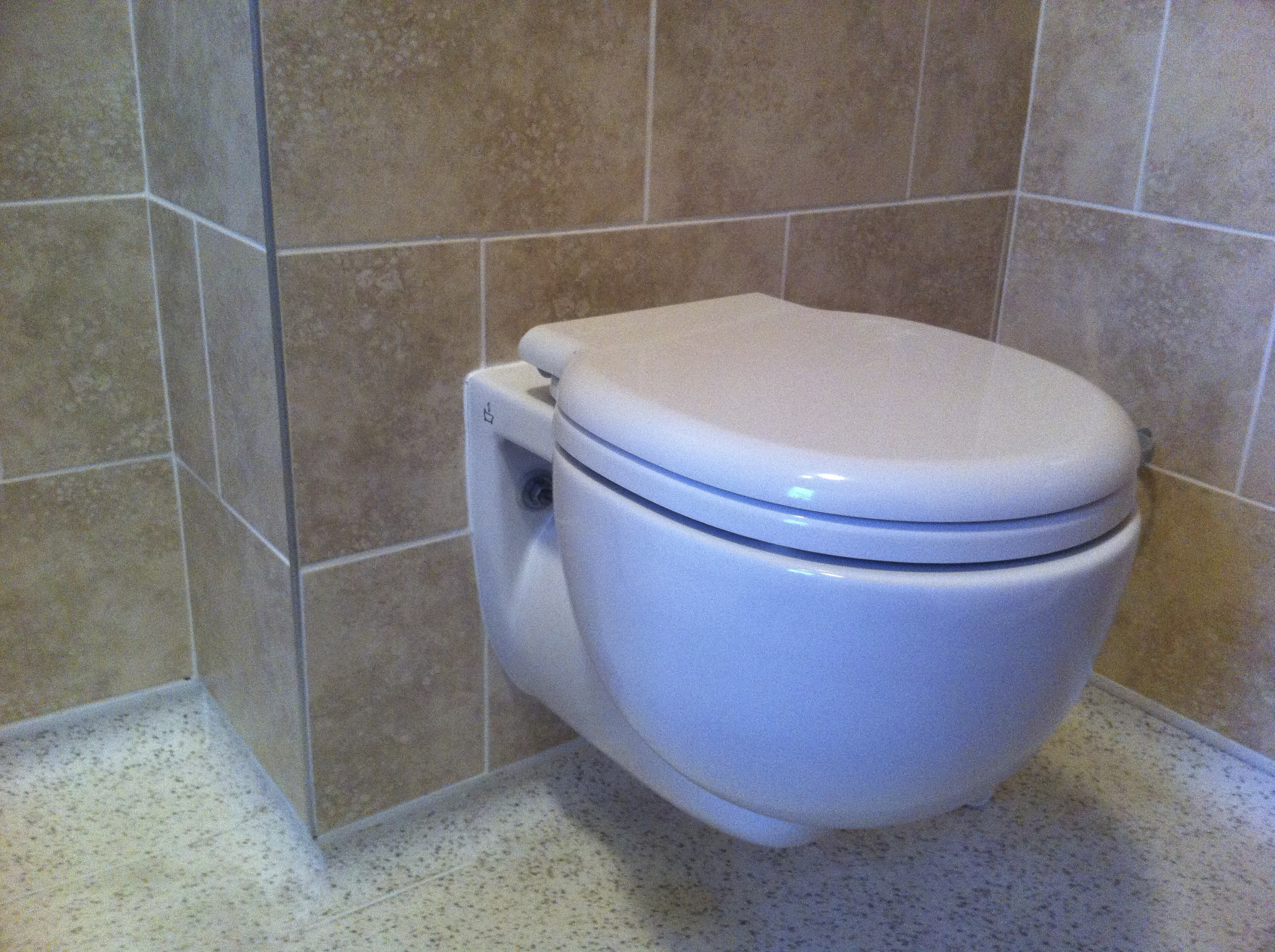 Wall Hung Toilet Pan.