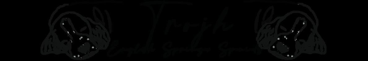 Trojh English Springer Spaniels
