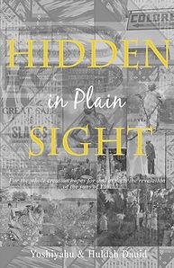 hidden in plain sight - huldah dauid.jpg