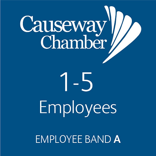Employee Band A (1 - 5 employees)