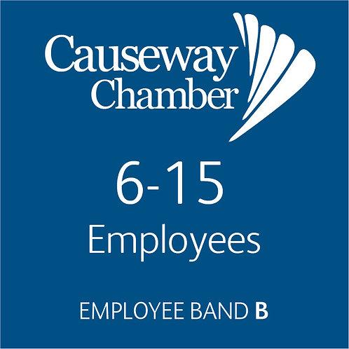 Employee Band B (6 - 15 employees)