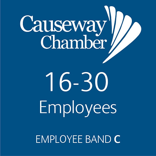 Employee Band C (16 - 30 employees)