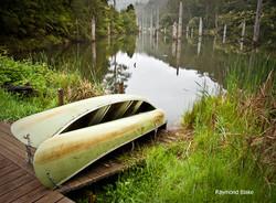 Lake Elizabeth - Forrest