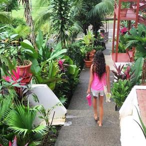 One Week in Beautiful Costa Rica