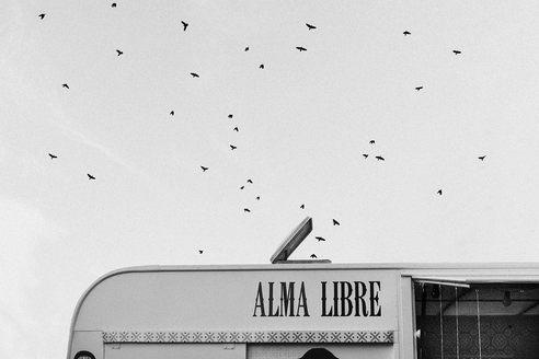 ALMA-LIBRE_Ximeh-Photography.jpg