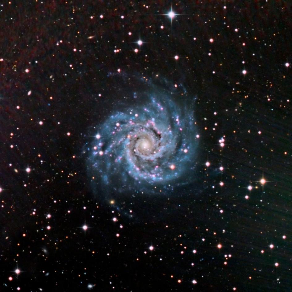 The Phantom Galaxy
