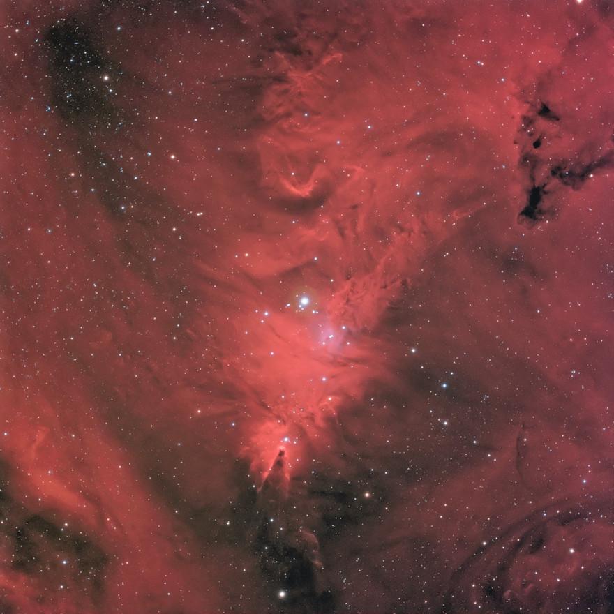 NGC2264 region
