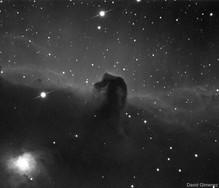 IC434 - The Horsehead Nebula