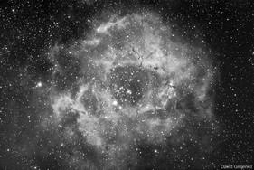 NGC2237- The Rosette Nebula