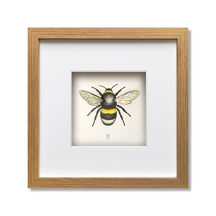 3D Bee Framed Print