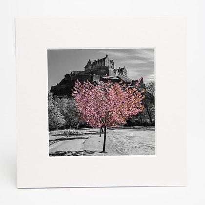 Edinburgh Castle Print An Independent Zebra Ryan McEwan