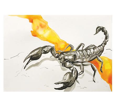 Fire Scorpion Print