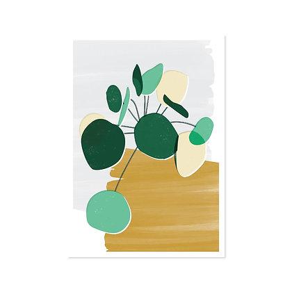 Pilea Print