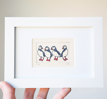 4 Puffins Framed Print