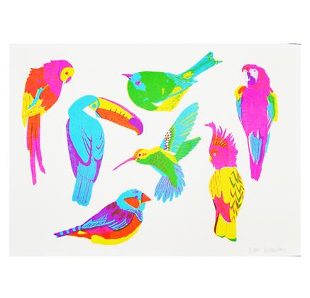 Tropical Birds Print